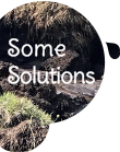 Some Solutions section