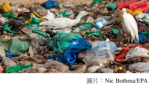 European parliament votes to ban single-use plastics (衛報 - 20190327)