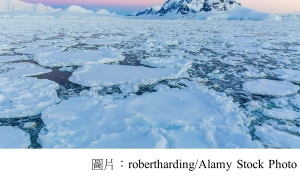 Natural ocean fluctuations could help explain Antarctic sea ice changes (Carbon Brief - 20181203)