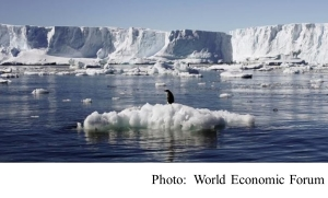 Antarctic seas are full of life and now we are able to identify them (World Economic Forum - 20180806)