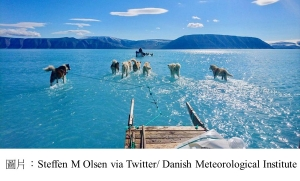 Surreal Image Of A Melting Greenland: Sled Dogs Mushing Through Endless Water (Forbes - 20190619)