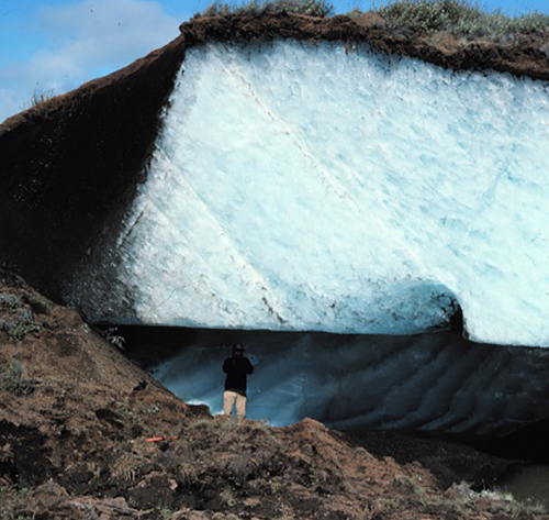 Permafrost is the soil that is frozen for more than two consecutive years.