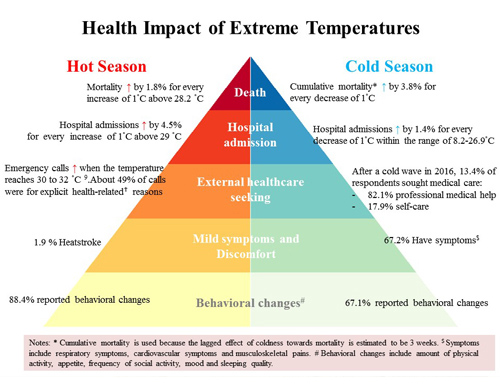 Health Impact Pyramid (Click to enlarge the image)