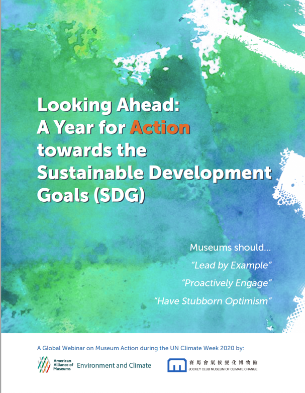 Looking Ahead A Year for Action towards the Sustainable Development Goals SDG Booklet