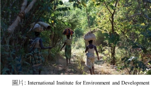 International Institute for Environment and Development (International Institute for Environment and Development - 201808)