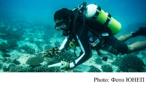 Dive in virtually to protect our oceans (UNEP - 20200724)
