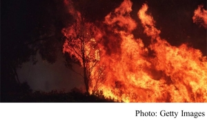 Climate change: Australia fires will be 'normal' in 3C world (BBC - 20200114)