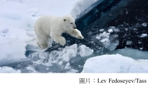 Ice-free Arctic summers now very likely even with climate action (衛報 - 20200421)