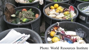 We've Woken Up to Plastic Waste. Is Food Waste Next? (World Resources Institute - 20180709)