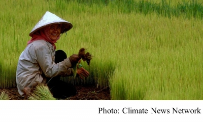 Global warming grows less nutritious rice (Climate News Network - 20180525)