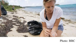 Plastic garbage patch: Medical tests 'inspired me to investigate' (BBC - 20180625)