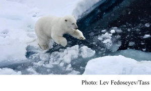 Ice-free Arctic summers now very likely even with climate action (The Guardian - 20200421)