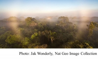 First study of all Amazon greenhouse gases suggests the damaged forest is now worsening climate change (National Geographic - 20210312)